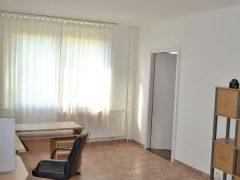 Debrecen, Jerikó utca - Pet friendly flat close to Agrár and Main Building