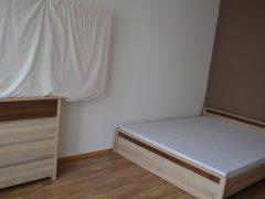 Debrecen, Jerikó utca - One room is for rent in a sunny flat next to McDonalds
