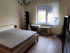 Debrecen, Csapó utca - Petfriendly flat is for rent in the Center
